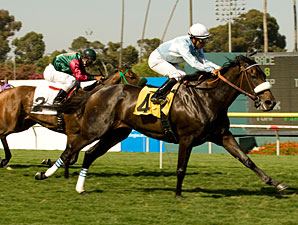 Harmonious wins the 2010 American Oaks.