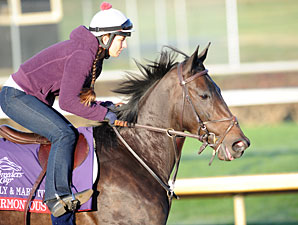 Harmonious at Churchill Downs, Nov. 1, 2011.
