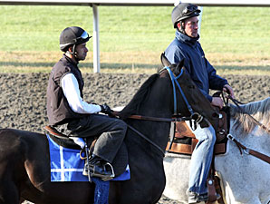 Harmonious at Keeneland on October 29, 2010.