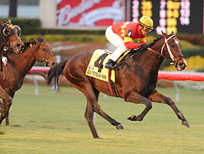 Hatfield wins the 2010 Gulfstream Park Turf Sprint.