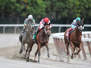 Havre de Grace wins the 2011 Beldame.