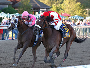 Havre de Grace wins the 2010 Fitz Dixon Cotillion.