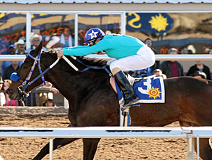 Hayley's Halo wins the 2011 El Diario Stakes.