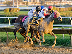 Headache wins the 2011 Hawthorne Gold Cup.