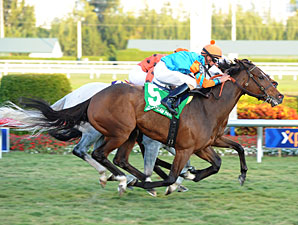 Heavenly Landing wins the 2012 Marshua's River.