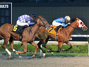 Heaven's Runway wins the 2012 Fitz Dixon, Jr. Memorial Juvenile Stakes.