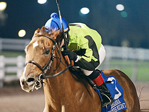 Heavy On Themister wins the 2013 La. Bred Premier Night Championship Stakes.