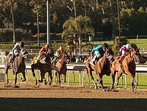 Heir Kitty wins the 2013 La Brea Stakes.