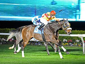 Heitai wins the 2015 Frontier Utilities Turf Sprint Stakes.