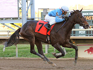 Her Smile wins the 2010 Donna Freyer Stakes.