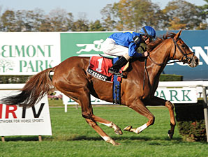 Hessonite wins the 2012 Ticonderoga.