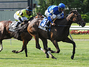 Hibaayeb wins the 2011 Sheepshead Bay.