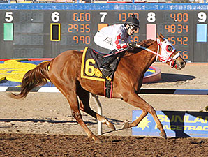 High Test Gal wins the 2014 LaSenora Stakes.