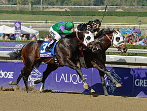 Hightail wins the 2012 Breeders' Cup Juvenile Sprint.