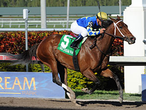 Hilda's Passion wins the 2011 Inside Information.
