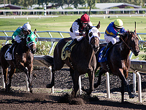 Hirschy wins the Cavonnier Juvenile Stakes.