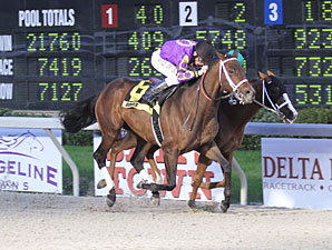 Hit the Road Lee wins the 2013 Fremont Stakes.