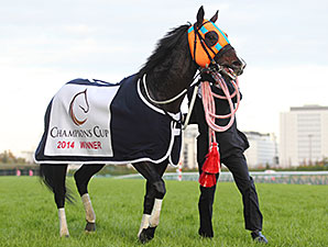 Hokko Tarumae wins the Champions Cup.