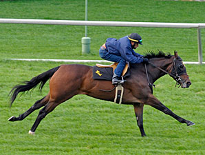 Holiday for Kitten works at Keeneland 10/24/2011.