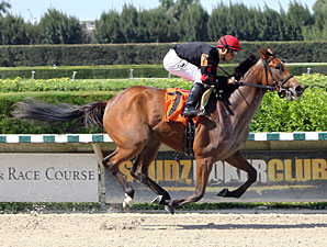 Holiday Magic wins the 2013 Brave Raj Stakes.