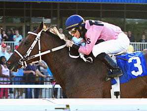 Hollywood Hit in the Karl Boyes Memorial Northwestern PA Stakes.