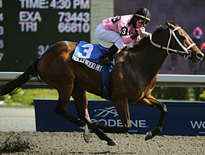 Hollywood Hit wins the 2010 Vigil.