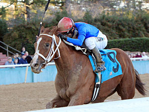 Holy Heavens wins the 2011 Martha Washington.
