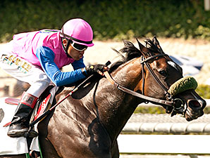 Home Journey wins the Las Cienegas Stakes.