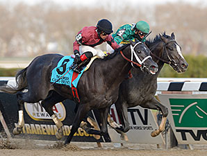 Honor Code wins the 2013 Remsen Stakes over Cairo Prince.