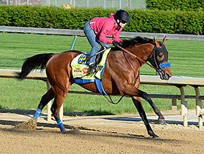 Hoppertunity - Churchill Downs, April 23, 2014.