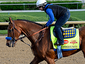 Hoppertunity works towards the Kentucky Derby April 27.