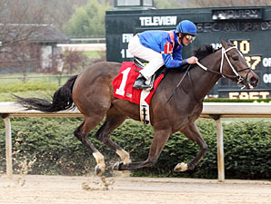 Hot Dixie Chick wins the 2010 Prima Donna.