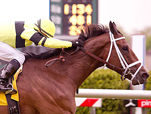 Hudson Steele wins the 2012 Henry S. Clark Stakes.