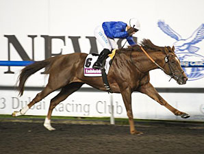 Hunter's Light wins the 2013 Al Maktoum Challenge Round II.
