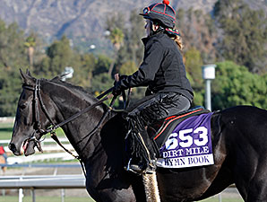 Hymn Book - 2013 Breeders' Cup, October 29, 2013.