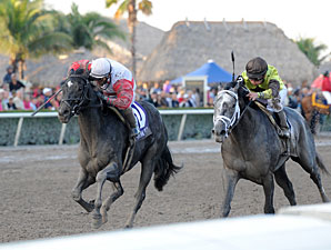 Hymn Book wins the 2012 Donn Handicap.