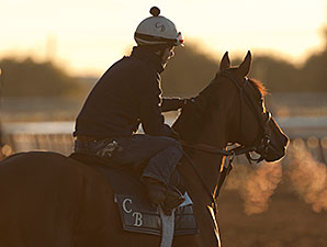 Hyper works at Woodbine on 10/25/2013.