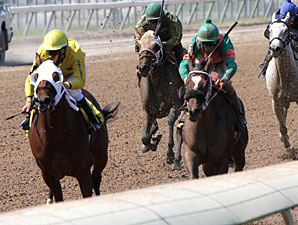I Dare U Em wins the 2012 LA Stallion Stakes - Filly Division