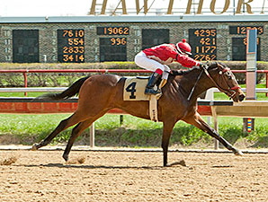 I Got It All wins the 2014 Land of Lincoln Stakes.