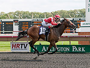 I Got It All wins the 2014 Straight Line Stakes.