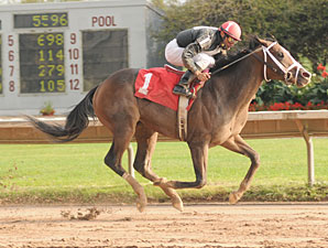 Ibboyee wins the 2009 NY Breeders' Futurity at Finger Lakes Gaming & Racetrack.