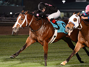 Icon Mike wins the Champion Energy Services Stakes.