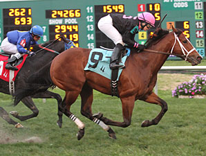 Icon Ike wins the 2012 Black Gold Stakes.