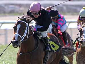 Icon Ike wins teh 2013 Colonel Power Stakes.