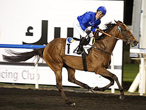 Ihtimal wins the 2014 UAE 1000 Guineas.