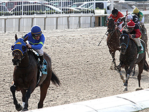 Ike Walker wins the 2015 South Mississippi Owners and Breeders Stakes.