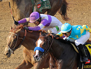 I'll Have Another and Bodemeister in the Kentucky Derby.