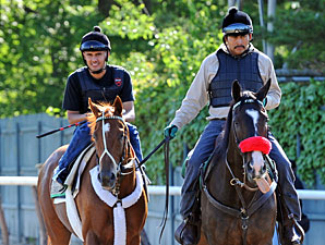 I'll Have Another - Belmont Park, June 1, 2012.
