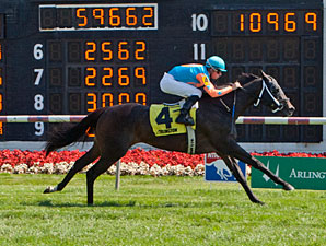 I'm Already Sexy wins the 2013 Hatoof Stakes.