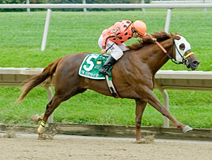 I'm Steppin' It Up wins the 2011 Kent Stakes.